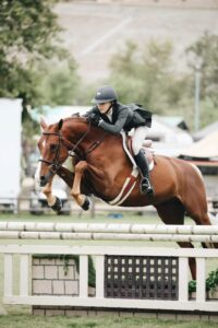 Horse rider competing in showjumping.